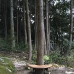 竹林寺 ベンチ